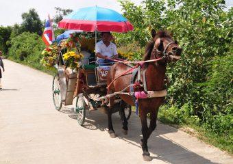 Horse-cart-ride-Lampang6-340x240